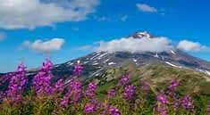 Камчатские вулканы.