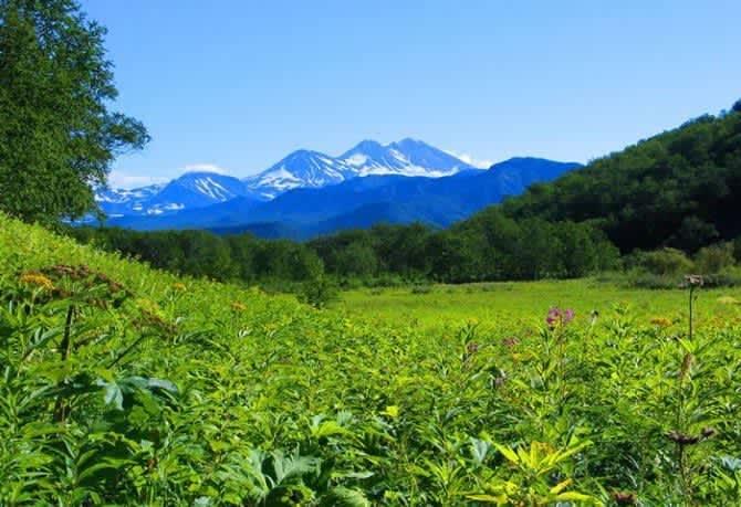 В долине зелень, в горах снег.